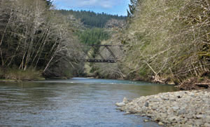 Clearwater River Forks Washington