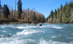 Hoh River Forks Washington